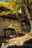 Historical well under tree in old castle in Banska Stiavnica, Sl Stock Photo