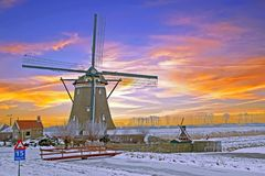 Historical windmill in the countryside from the Netherlands Royalty Free Stock Images