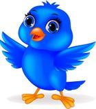 Historieta azul del pájaro Foto de archivo