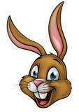 Historieta Bunny Rabbit Face ilustración del vector