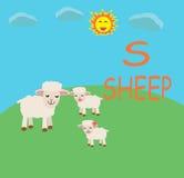 Historieta de la diversión del alfabeto de las ovejas Foto de archivo libre de regalías