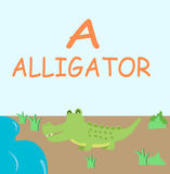 Historieta de la diversión del alfabeto del cocodrilo Fotos de archivo libres de regalías