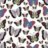 Historieta de la mariposa que dibuja el modelo inconsútil, fondo del vector Insecto dibujado abstracción con las alas en colores  stock de ilustración