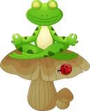 Historieta de la rana que se sienta en seta Foto de archivo libre de regalías