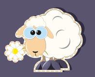 Historieta de las ovejas Imagenes de archivo