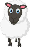 Historieta de las ovejas Foto de archivo