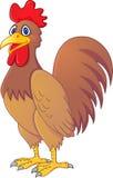 Historieta del gallo Foto de archivo libre de regalías
