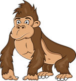 Historieta divertida del gorila Imagen de archivo libre de regalías