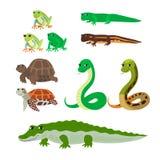 Historieta fijada: cocodrilo acuático de la serpiente de la tortuga del newt de la rana arbórea stock de ilustración