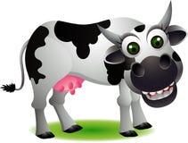 Historieta linda de la vaca Fotografía de archivo
