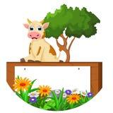 Historieta linda de la vaca que se sienta con la muestra en blanco Fotos de archivo libres de regalías