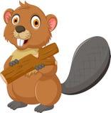 Historieta linda del castor que come la madera ilustración del vector