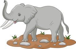 Historieta linda del elefante Imagen de archivo libre de regalías