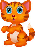 Historieta linda del gato Imagenes de archivo