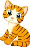 Historieta linda del gato Imagen de archivo libre de regalías