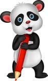 Historieta linda del oso de panda que sostiene el lápiz rojo Foto de archivo