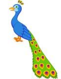 Historieta linda del pavo real Imágenes de archivo libres de regalías
