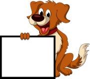 Historieta linda del perro que lleva a cabo la muestra en blanco Foto de archivo libre de regalías