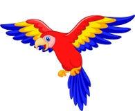 Historieta linda del pájaro del loro Imagen de archivo libre de regalías