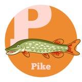 Historieta Pike de ABC Imágenes de archivo libres de regalías