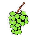 Historieta verde del icono de la rama de la uva Fotos de archivo libres de regalías