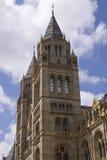 historii London muzeum naturalny Obraz Stock