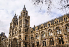 historii London muzeum naturalny Fotografia Stock