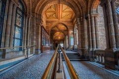 historii London muzeum naturalny Fotografia Royalty Free