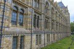 Historii Naturalnej Muzealna powierzchowność, Londyn Obraz Royalty Free