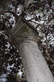 historique de colonne abandonné dans Pesaro Photographie stock libre de droits