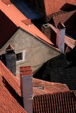 Historisch dak Stock Afbeelding