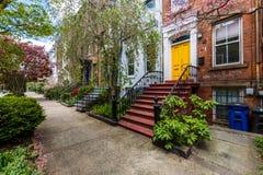 Historisch District van Hof Straat in Wooster-Vierkant in New Haven stock fotografie