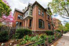 Historisch District van Hof Straat in Wooster-Vierkant in New Haven royalty-vrije stock afbeeldingen