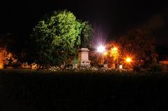 Historisch standbeeld van Oradea-transilvania in de nacht stock afbeelding
