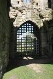Historische abdijruïnes Stock Fotografie