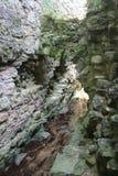 Historische Abteiruinen Stockfoto