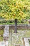 Historische Alhambra-Gärten Stockfotos