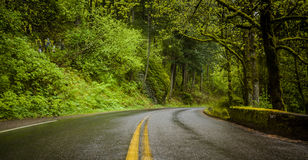 Historische alte Landstraßen-Ansicht in Columbia River Schlucht Lizenzfreie Stockfotos