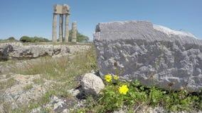 Historische Apollo-Tempelruinen in der Akropolise, Rhodos, Griechenland Zeit-Versehen 4K stock video footage