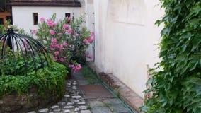 Historische binnenplaats Historisch huis met mooie bloemen en historische waterput Klimop op de muur stock video