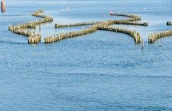 Historische haringenwaterkering Stock Foto
