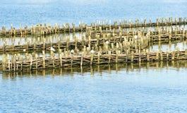 Historische haringenwaterkering Royalty-vrije Stock Foto's