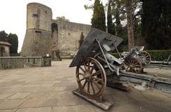 Historische kanonnen in pubblic park` La Rocca ` Bergamo stock fotografie
