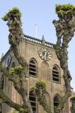 Historische kerktorenspits met wilgen, Nederland stock foto's