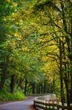 Historische Landstraße und Herbstlaub Lizenzfreies Stockbild