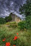 Historische ruïne op een donkere bewolkte dag Royalty-vrije Stock Foto