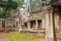 Historische Ruinen des Ta-Som-Tempels Stockbilder