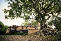 Historische Stadt von Sukhothai Stockfotografie