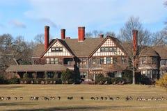 Historische Villa mit Gänsen auf dem Feld Stockbilder