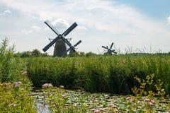 Historische Windmühle Lizenzfreie Stockfotos